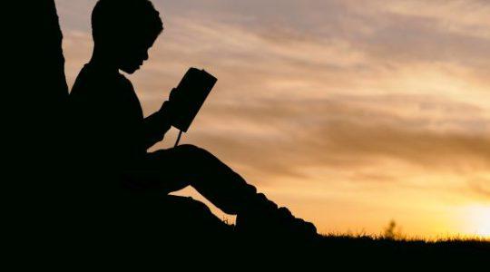 Як організувати себе на самостійне навчання впродовж життя?