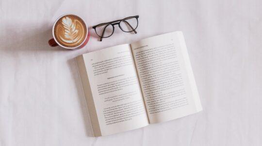 Про що йдеться в книзі Девіда МакРейні «Ви не такі розумні»?